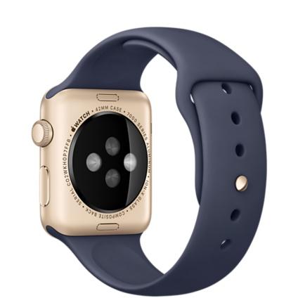 Apple Watch Sport With Mid Blue Sport Band (42mm) MLC72 hình 3