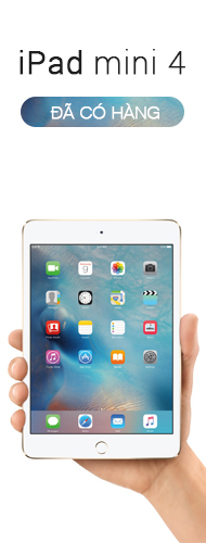 Right_ipadmini_4