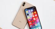 Apple iPhone Xs Max 2 sim quốc tế khan hàng khi về Việt Nam