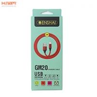 Cáp Genshai Micro GM20 (2m)