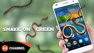 [HOT] Rắn bò ra ngoài màn hình: Snake on screen: Không dành cho bạn yếu tim.
