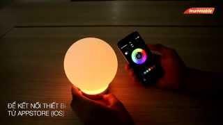 ĐỘC & LẠ - Loa di động kiêm đèn ngủ thông minh Divoom AuraBulb