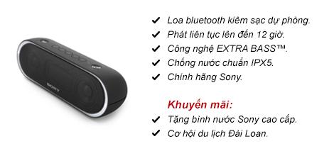 Loa bluetooth Sony SRS-XB20
