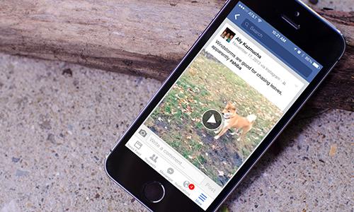 Cách tắt tính năng tự chạy video của Facebook