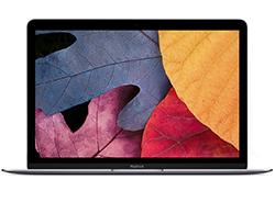 New Macbook Retina 12.0 inch Gray 512Gb - MJY42 - (2015)